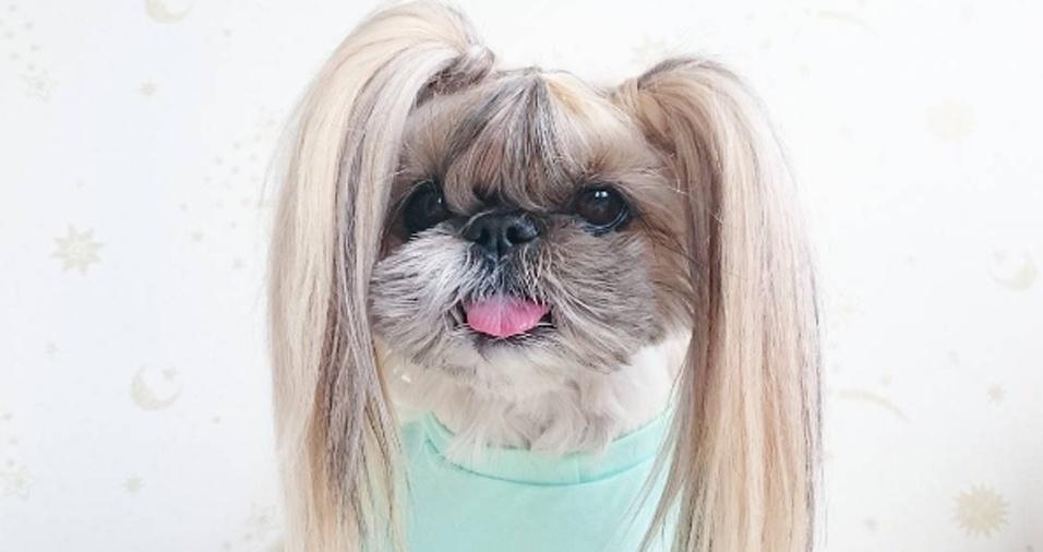32. Além dos fios serem bonitos e bem cuidados, a quantidade de cabelo de Kuma deixaria muita gente por aí com inveja