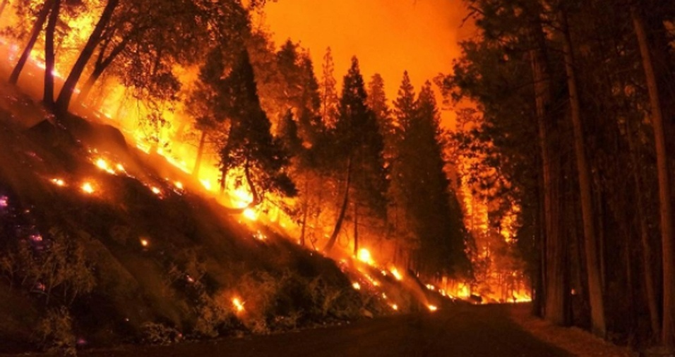 1. O bombeiro norte-americano Gregg Boydston faz parte da equipe de prestação de serviços para extinguir incêndios florestais, inclusive em parques nacionais. Porém, ele não só apaga, como dá início ao fogo, em locais apropriados, é claro, em seus momentos de folga. A paixão pelas chamas, no entanto, divide o coração de Gregg com outro hobby: a fotografia. Confira o trabalho do bombeiro, que o compartilha com o público por meio de imagens que mostram o cotidiano de sua profissão