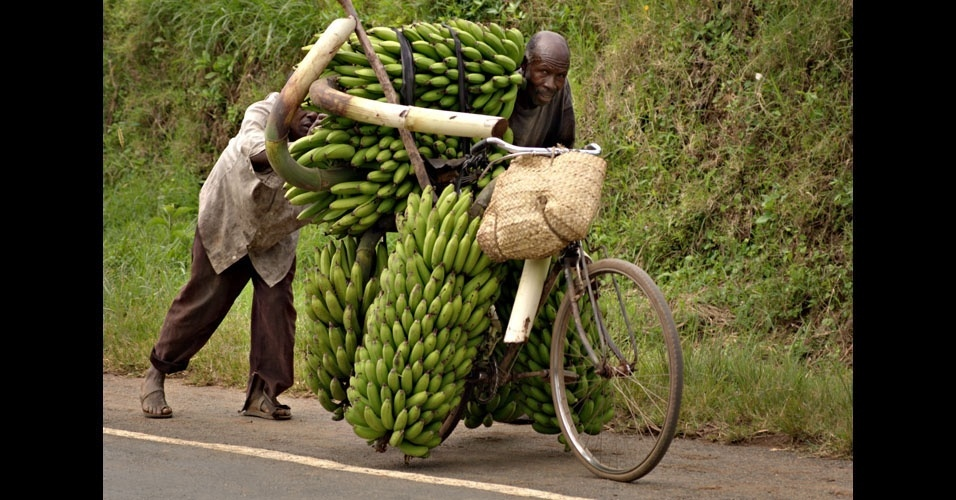 17. Bananeiro