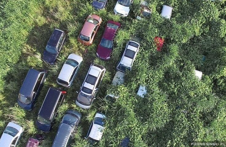 13.out.2015 - Diversos veículos foram abandonadas e agora estão sendo tomados pela natureza