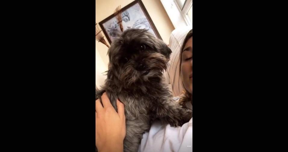21.mai.2017 - A cadela Ursa é o xodó de Sasha, por isso a exigência da jovem em encontrar um prédio que aceitasse animais