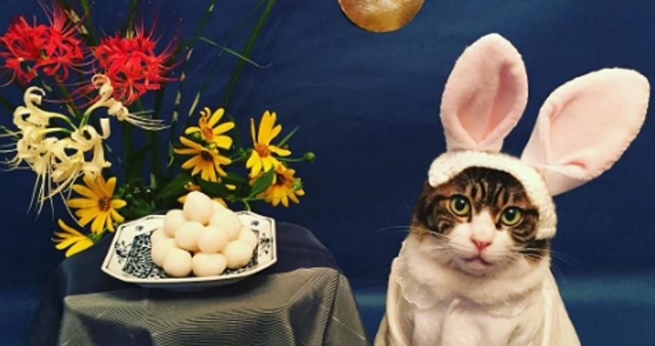 35. Mais uma foto de Páscoa, desta vez ao lado dos ovos!
