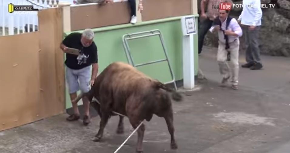 """15.jun.2017 - O touro logo chifrou o """"cinegrafista"""" por baixo e jogou-o para cima"""