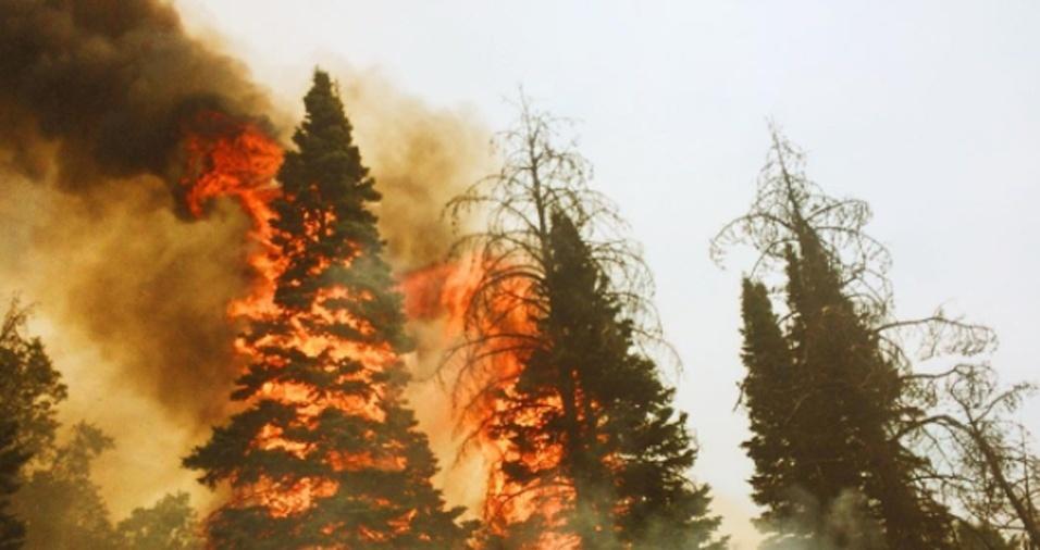 26. Gregg revela que se não fosse bombeiro, estaria trabalhando integralmente como fotógrafo