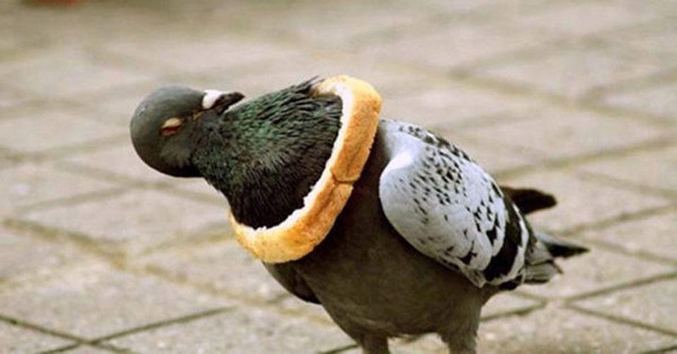 4. Calma, é só um pedaço de pão