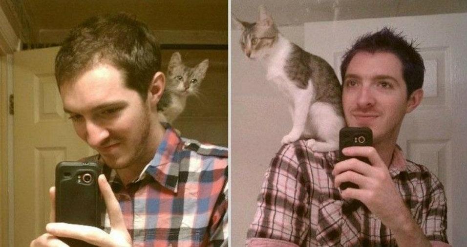 3. O gatinho se desenvolveu fisicamente... o dono? Nem tanto
