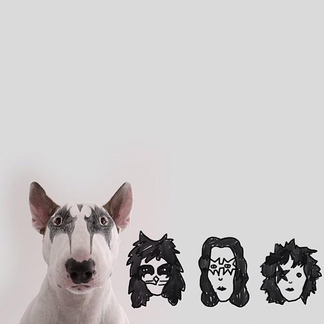 """9.dez.2015 - Bull Terrier Jimmy Choo é """"maquiado"""" como um integrante da banda Kiss"""