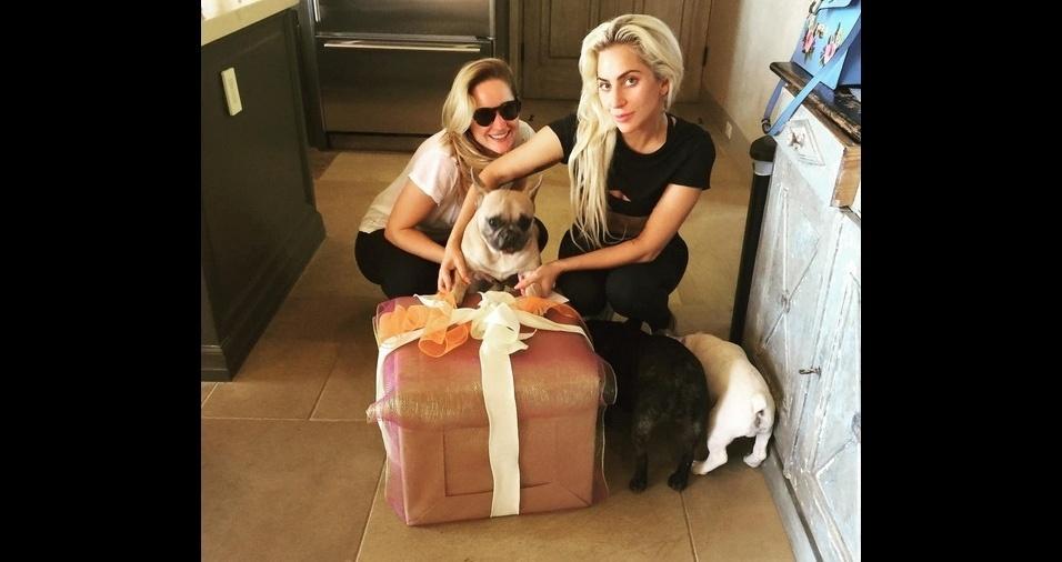 """6. A cantora pop Lady Gaga é apaixonada por seu trio de cachorrinhos Koji, Miss Asia e """"Cow Pig"""", e sempre que possível leva seus pets em viagens e turnês"""