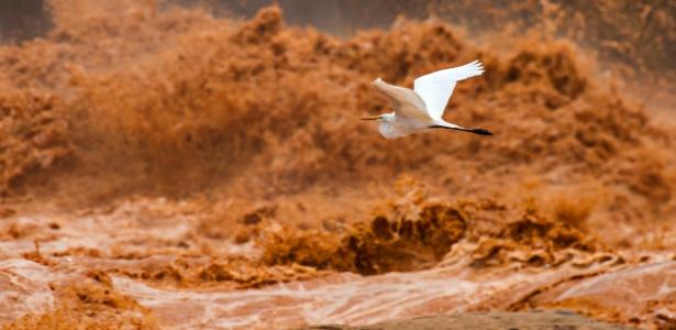 Lama tóxica ao atingir a foz do Rio Doce, no litoral capixaba - Instituto Últimos Refúgios