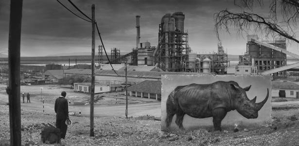 """""""Fábrica com rinoceronte"""" é parte do projeto """"Inherit the Dust"""" (herde a poeira) do fotógrafo britânico Nick Brandt. As fotos mostram painéis gigantes com a imagem de um animal selvagem colocado em meio a seu antigo habitat natural, já transformado em um ambiente moderno - Reprodução/Nick Brandt"""