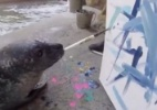 Reprodução/Facebook/Buttonwood Park Zoo