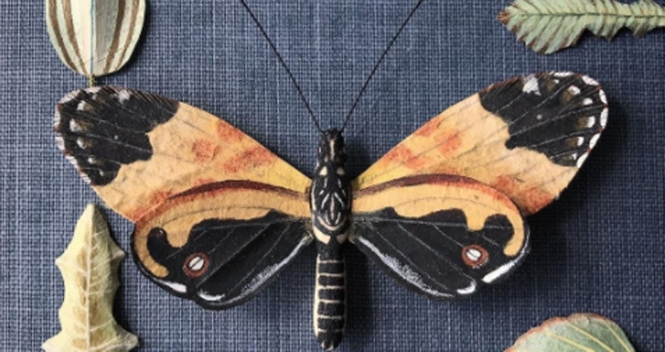 1. Os artistas Ann Wood e Dean Lucker formam a dupla Woodlucker, responsável por estudar e reproduzir itens da fauna e da flora com realismo  e detalhamento