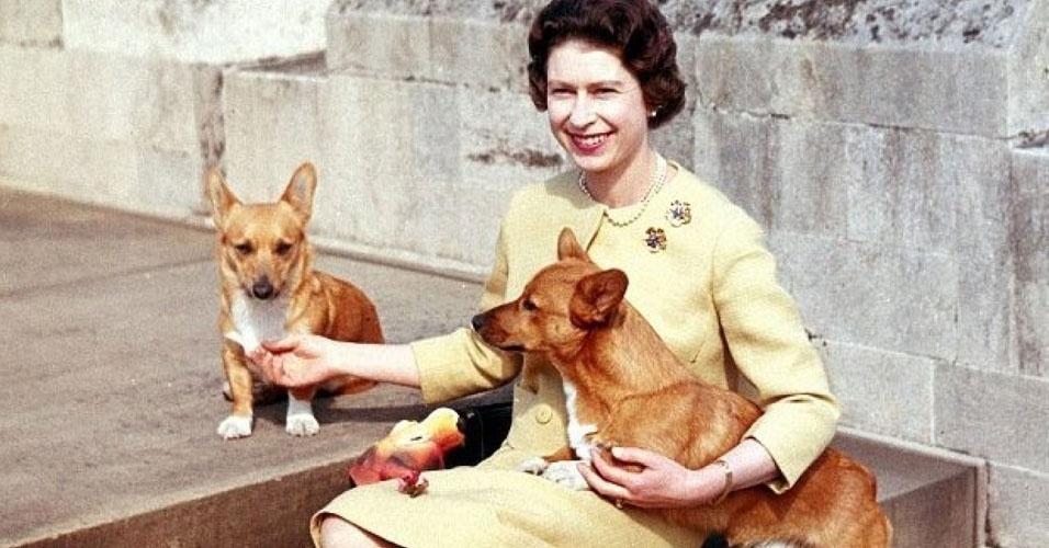 """5. Durante o seu reinado, a rainha teve mais de 30 cães da raça corgi. A primeira foi Susan, que ganhou em 1944, quando completou 18 anos. Os demais eram, em sua maioria, descendentes de Susan. Os corgi da rainha cruzaram com cães dachshund da princesa Margaret, dando origem à raça """"dorgi"""". Mas, além dos corgi, a rainha já teve labradores e cocker spaniels"""
