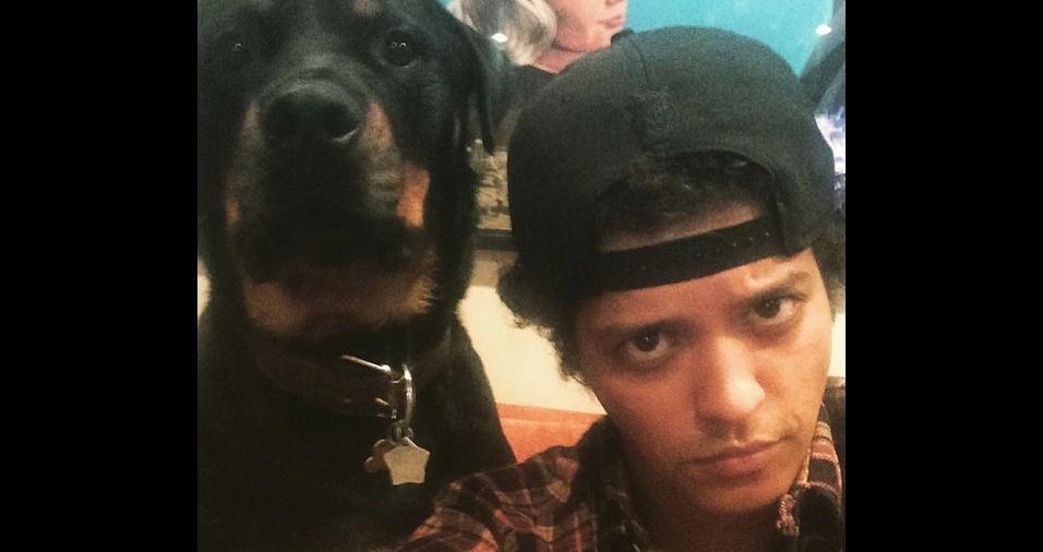 21. O cantor e compositor Bruno Mars é louco pelo seu cão Gerônimo, o qual cria desde filhote