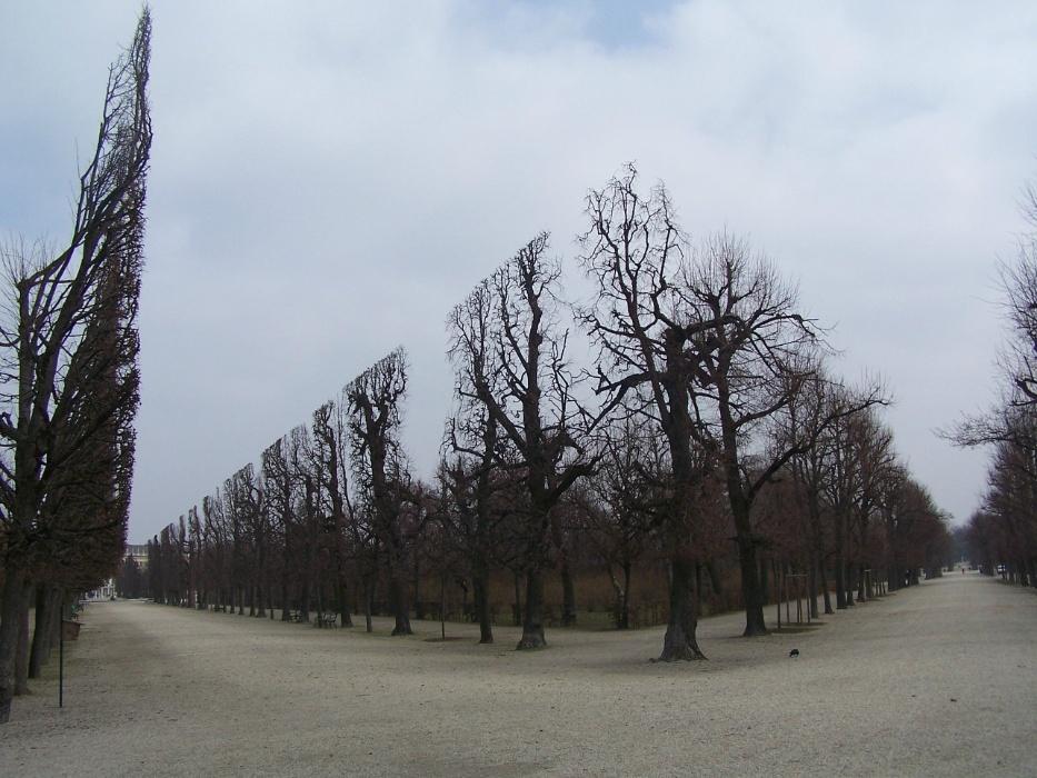 Parque do palácio de Schonbrunn em Viena, na Áustria