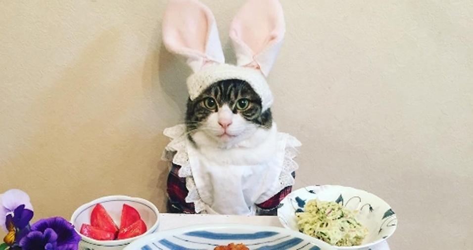 3. Se a Páscoa estiver próxima, não se esqueça de sair com suas orelhas. Com certeza, o grupo de amigos entenderá e se divertirá