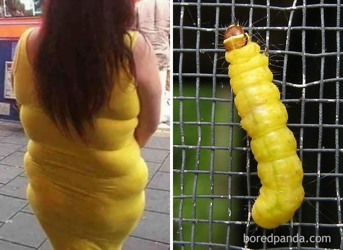 Fev.2017 - Mulher com vestido amarelo justinho e uma lagarta