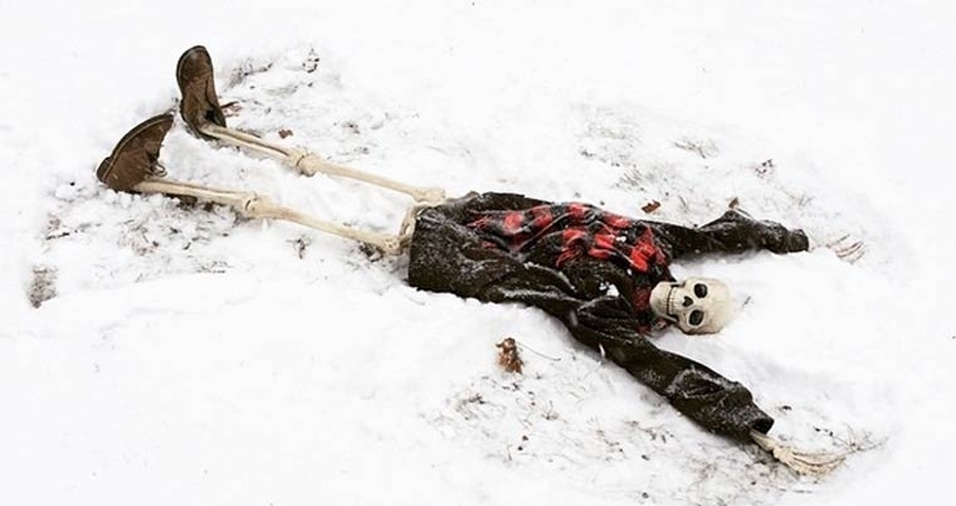 47. Parece que Skellie ama neve