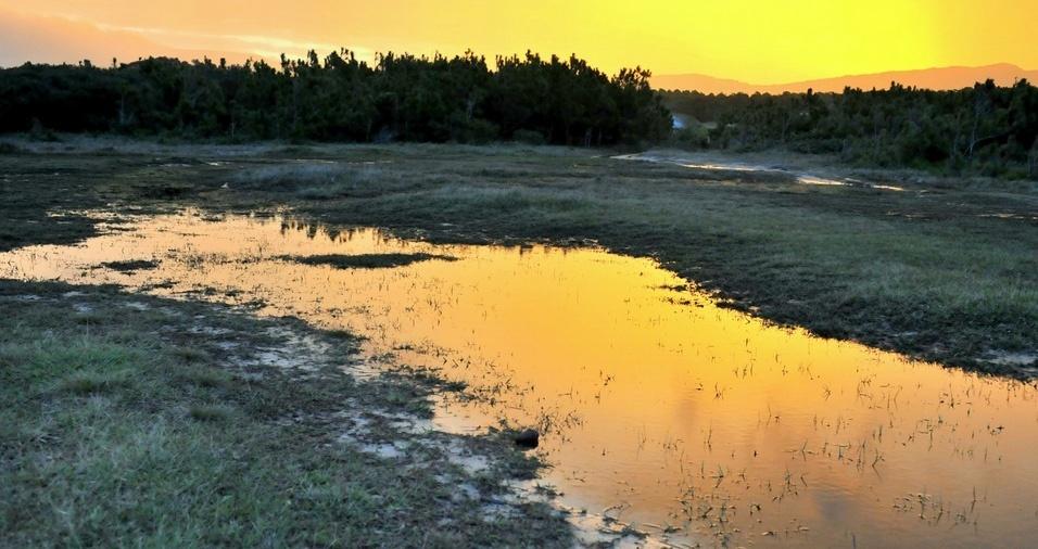 20. Parque Estadual do Rio Vermelho - O parque proporciona momentos de lazer e contato com a natureza, além de um trabalho de conscientização ambiental por meio de visitas guiadas. A trilha é aberta ao público de terça a domingo, das 10h às 17h. As visitas duram cerca de 30 minutos, com grupos de até 30 pessoas, e uma capacidade máxima de 650 pessoas por dia. É preciso agendamento prévio