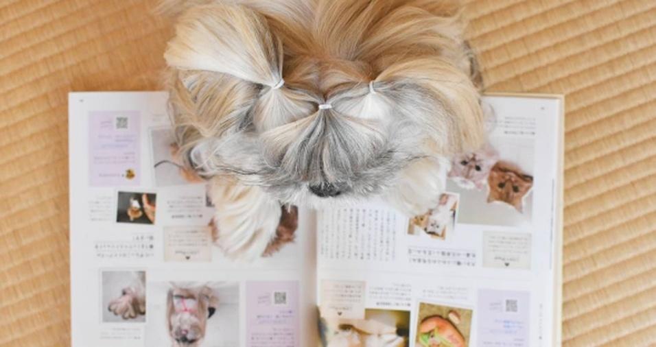 13. Algumas fotos permitem analisar mais atentamente os penteados usados por Kuma
