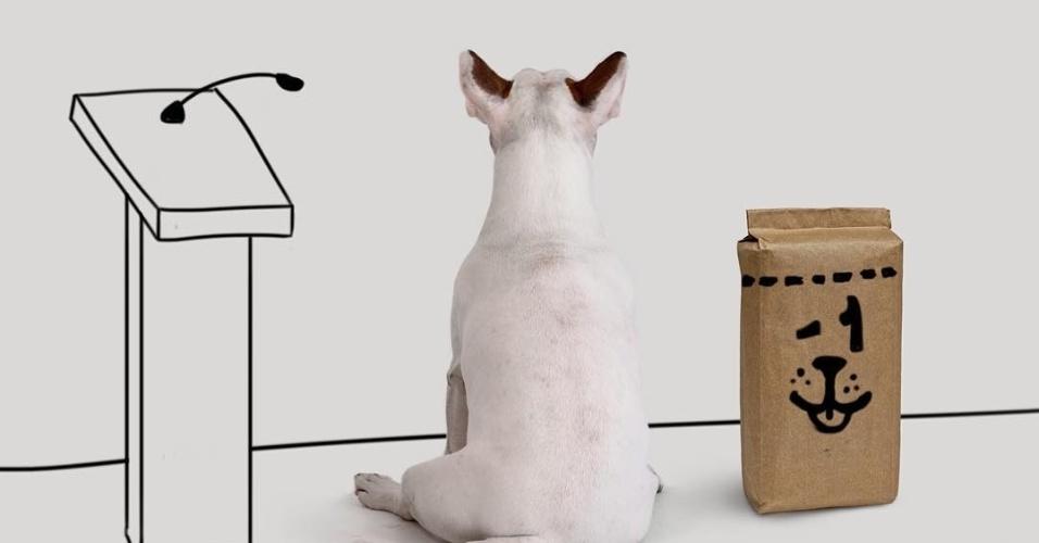 9.dez.2015 - Jimmy Choo, o bull terrier do ilustrador Rafael Mantesso, é o garoto propaganda da campanha #TodosPorMenos1, iniciativa que pretende que uma marca reduza em 1 quilo a embalagem de ração, revertendo a quantia separada para ajudar abrigos para animais