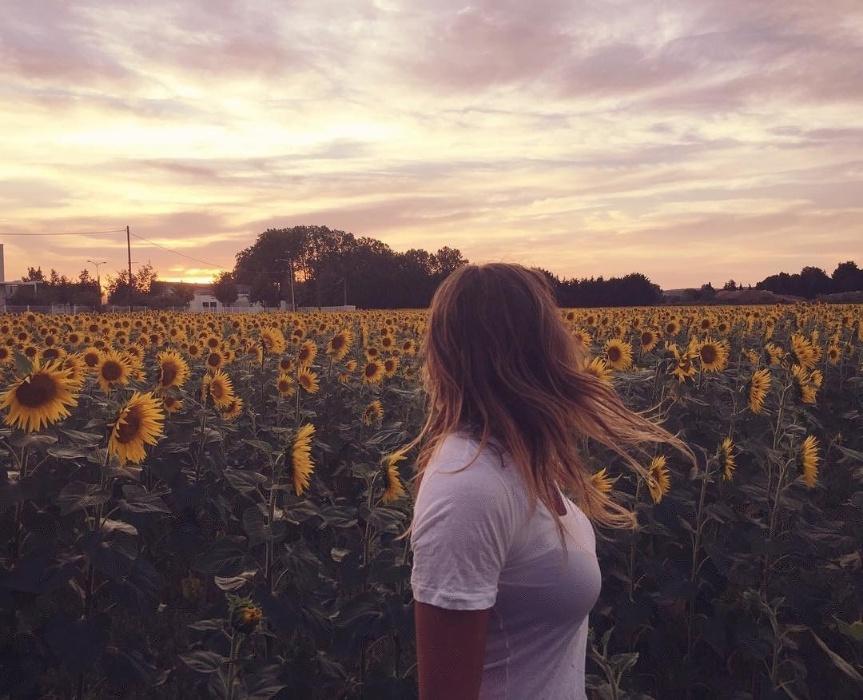 12.jul.2016 - Sasha posa para foto em meio a um campo de girassóis em Nîmes, na França