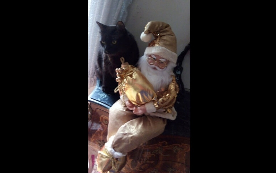 Iago esperando o papai Noel