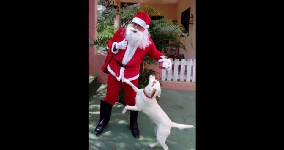 Admilson Pedroso de Lima, de Guaratinguetá (SP), enviou foto da cachorrinha Nina pedindo presente para o papai Noel
