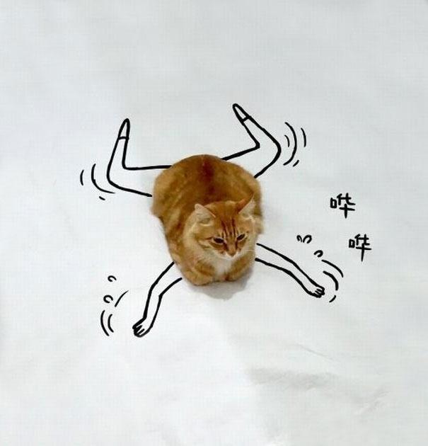 7.dez.2015 - No desenho acima, o gatinho aparece nadando. Se segura, Michael Phelps!