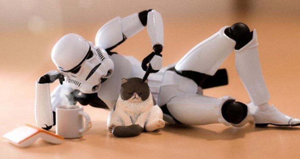 26. Gastaria o dia fazendo coisas divertidas, como acariciar um gatinho?