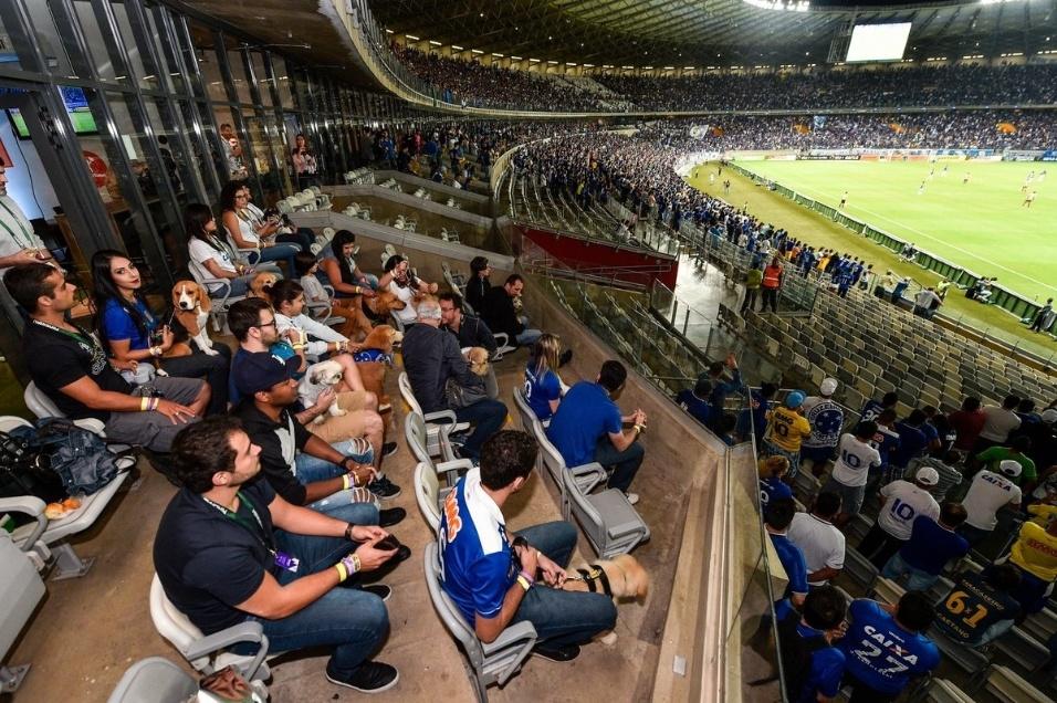 """19.abr.2017 - Estádio do Mineirão é o primeiro ambiente """"pet friendly"""" em uma grande competição de futebol no país"""