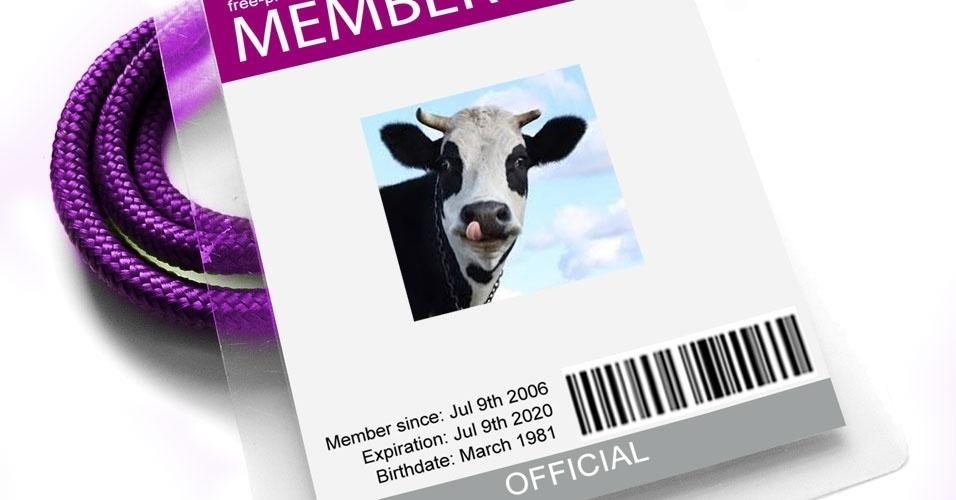 9. No Estado de Bengala Ocidental, as vacas devem portar um documento de identidade com foto