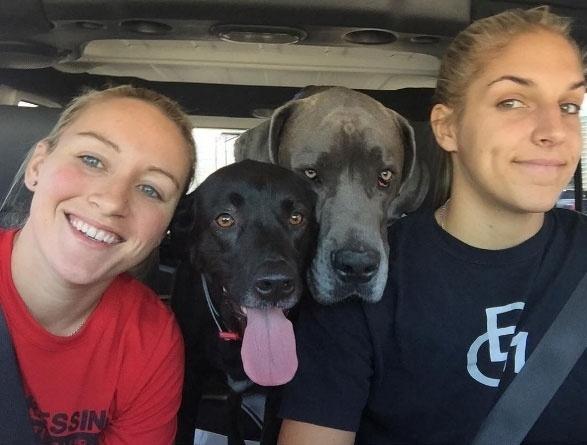 Elena Delle Donne, jogadora de basquete da seleção dos EUA, com sua noiva, Amanda Clifton, e os seus cachorros