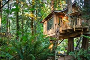 Reprodução/TreeHouse Point