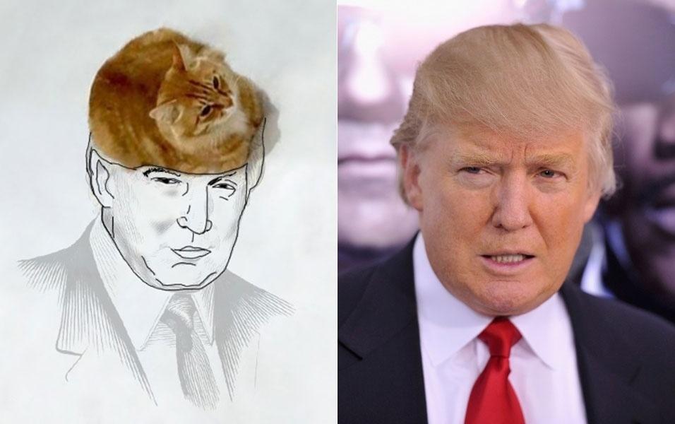 7.dez.2015 - Na imagem acima, um internauta usou o pobre gatinho para reproduzir a cabeleira do bilionário Donald Trump, candidato à presidência dos Estados Unidos