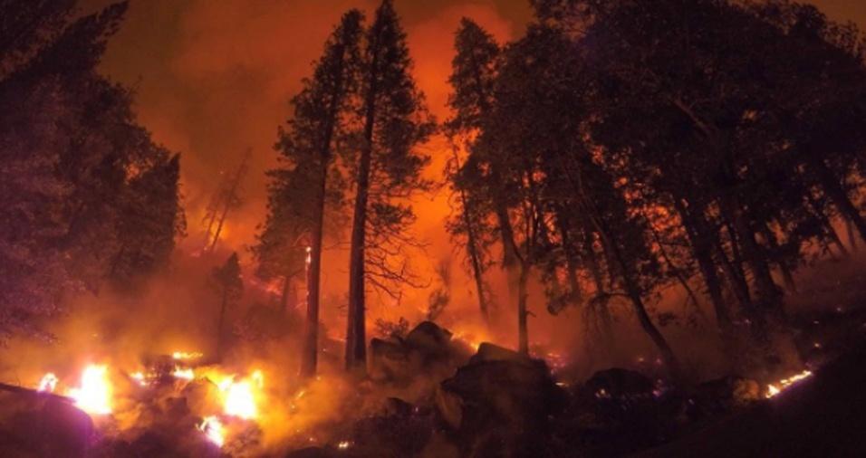 30. O período com mais incidência de incêndios, segundo Gregg, acontece entre os meses de maio e outubro
