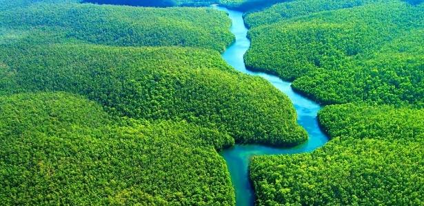 Medidas Provisórias 756 e 758 reduzem áreas de Floresta Nacional (Flona) na Amazônia