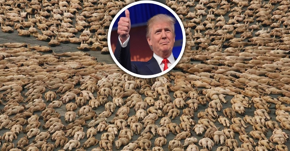 Montagem mostra o republicano Donald Trump e foto de Spencer Tunick