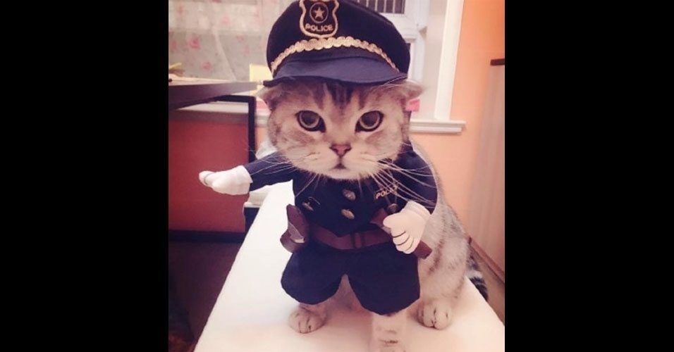 35. Policial