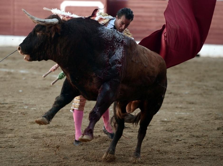 18.jun.2017 - Ivan Fandiño aparece em disputa com o touro durante torneio em Aire-sur-l'Adour, na França. O toureiro espanhol caiu no chão, teve o pulmão perfurado pelo chifre do touro e morreu neste sábado (17)