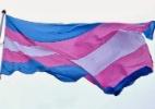 Bandeira trans (Foto: Reprodução)