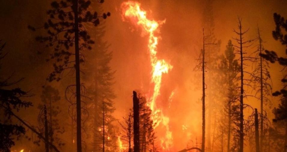 2. Gregg costuma compartilhar fotos dos incêndios florestais que ajuda a combater, falando sobre a importância de os bombeiros montarem uma estratégia e plano de ação para poderem extinguir as chamas com eficiência e rapidez