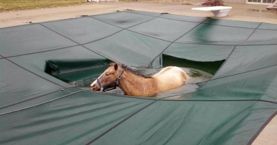9. Ninguém me avisou que a piscina estava fechada