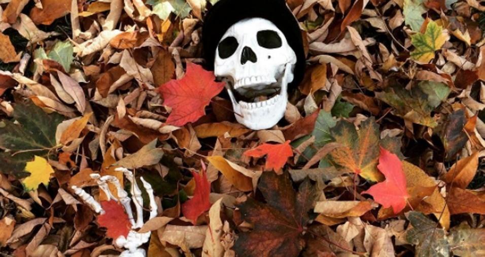 """38. """"No outono é sempre igual, as folhas caem no quintal"""""""