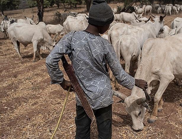 Com facão, jovem da etnia fulâni cuida de rebanho na região de Kaduna, na Nigéria