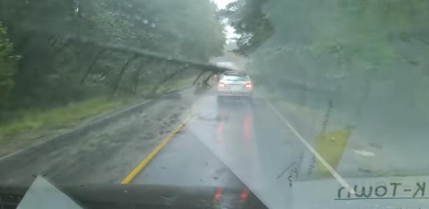 13.set.2017 - O vídeo do momento em que a árvore cai viralizou nas redes sociais