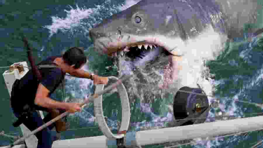 """Roy Scheider ataca o predador supremo em """"Tubarão"""" - Universal"""