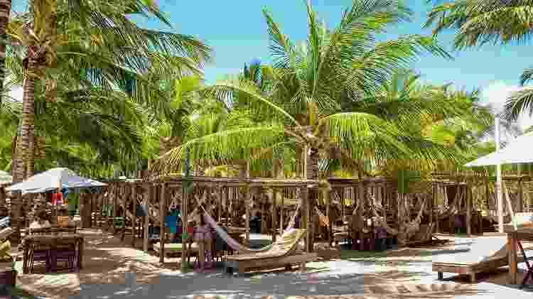 Hibiscus Beach Club (Maceió, Alagoas) - Divulgação - Divulgação