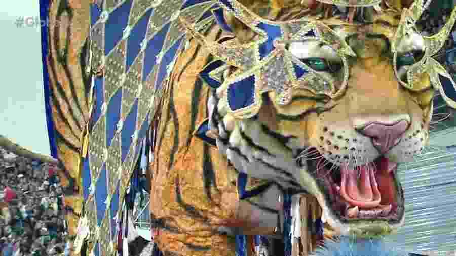 O tigre da Casa Verde - Reprodução/TV Globo