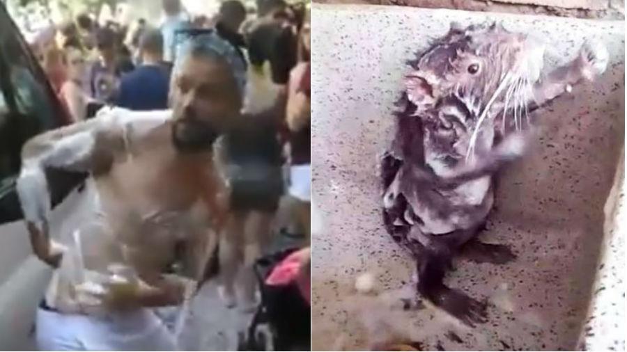 """Humorista Victor Sarro imita """"rato tomando banho"""" para curtir o Carnaval - Reprodução"""